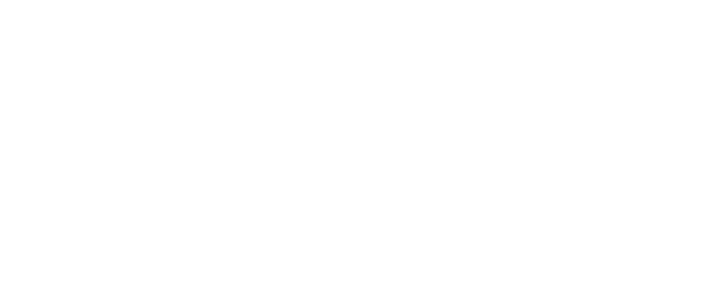 לוגו טיסהזולה בניית אתרים אביווב